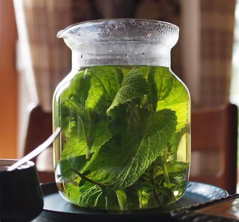 lemon balm tea benefits