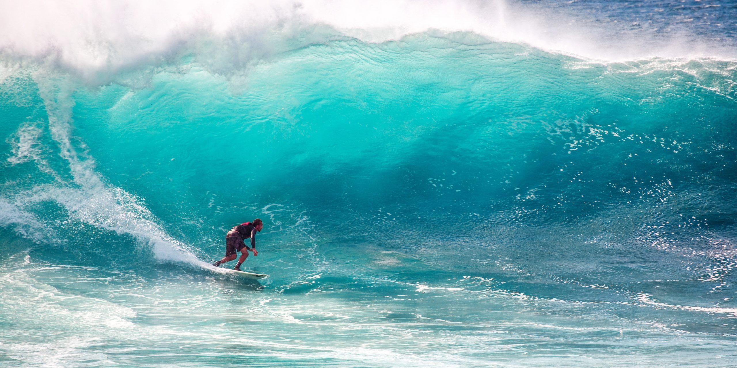best surf movies