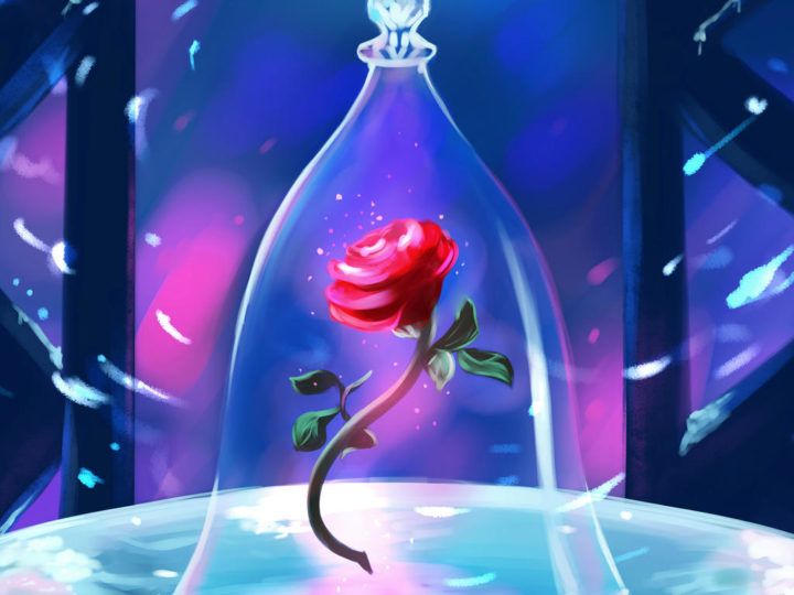 Beauty And The Beast Rose: The Mystical Gift By Disney