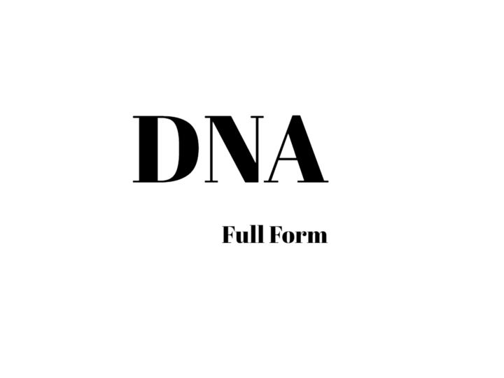 What Is DNA Full Form? Learn More About DNA